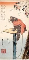 honolulu_hiroshige_pet_monkey_cherry_blossoms_7b